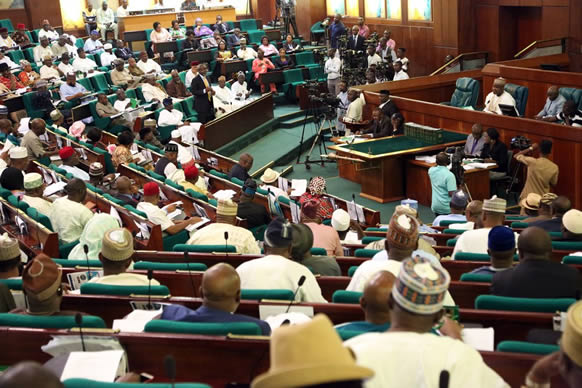 2017 budget: Reps raise concerns over 15% capital releases