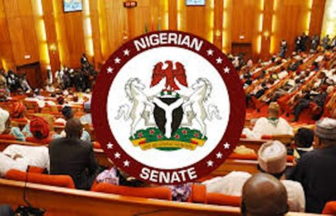 Senate Tells Nigerians Not to Expect Stable Power Supply