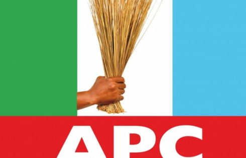 APC Ward Congresses Null and Void, Says Ozekhome